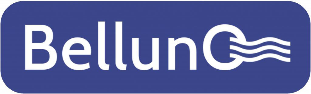 Логотип компании Belluna.